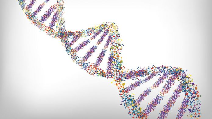 CRISPR Clinical Trial to Edit Human Genes