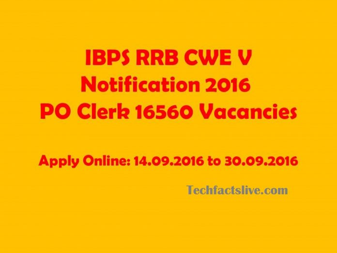 ibps rrb cwe v notification 2016
