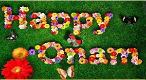 Best collection of onam messages sms and wishes here on this page we have provided the best collection of onam sms in malayalam and english onam messages and wishes for social networking sites m4hsunfo
