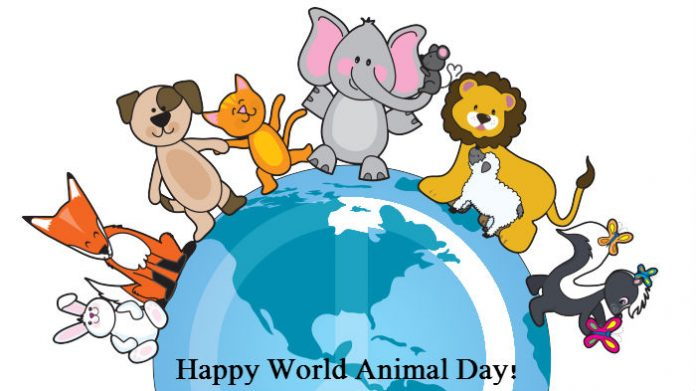 world animals day 2016