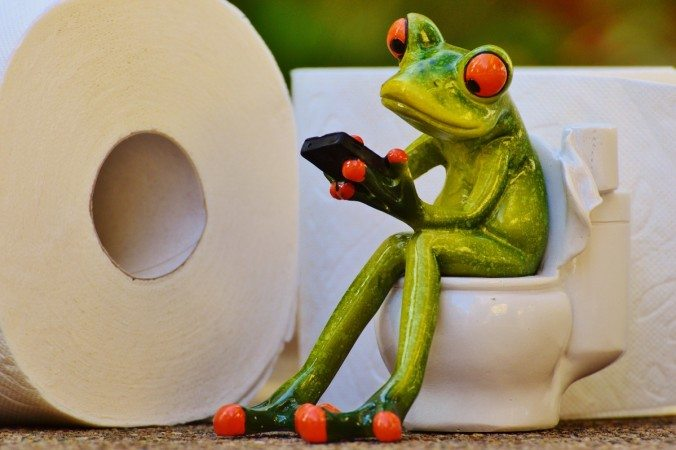 Indian Government to launch Toilet Finder tool