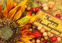 funny-thanksgiving-wallpapers-11-2560x1440