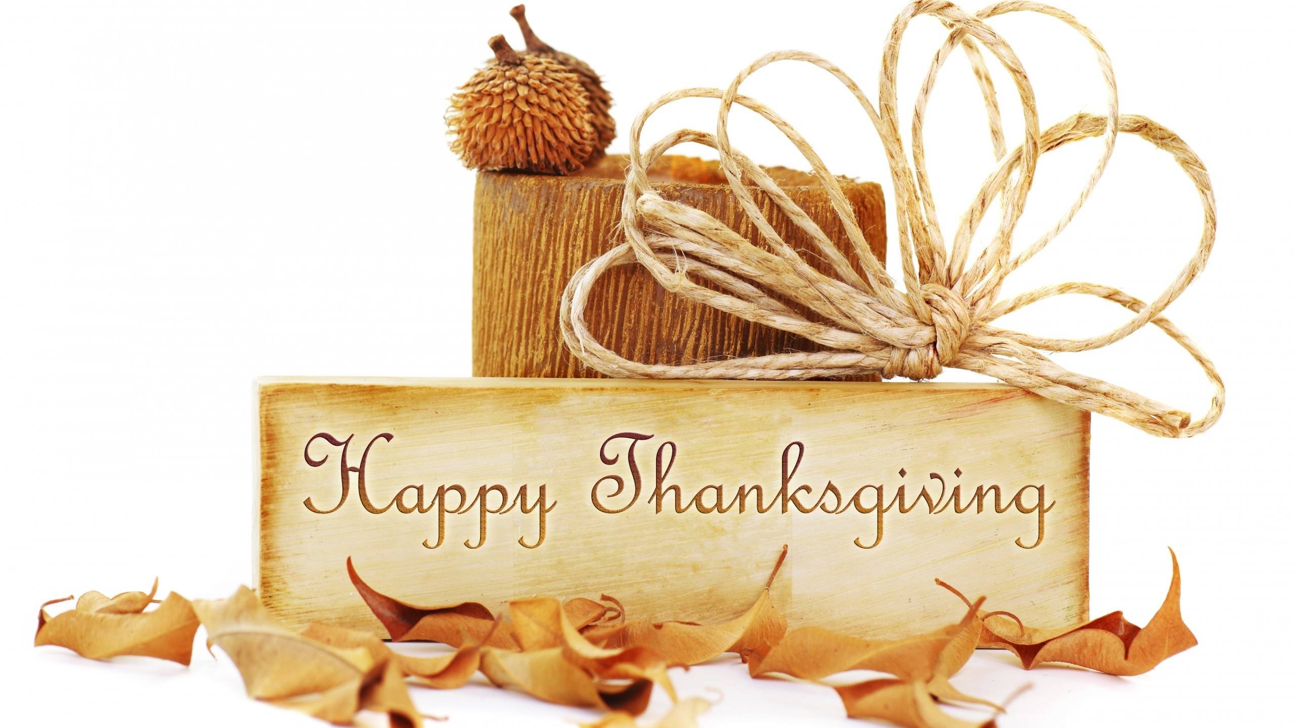 Thanksgiving Day: Best SMS Wishes for Your Loved Ones