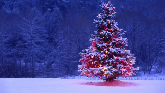 Best Christmas Wishes 2016 Messages, SMS in English and Hindi