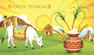 happy pongal 2017