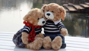 Teddy Day Shayari