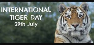 Happy International Tiger Day