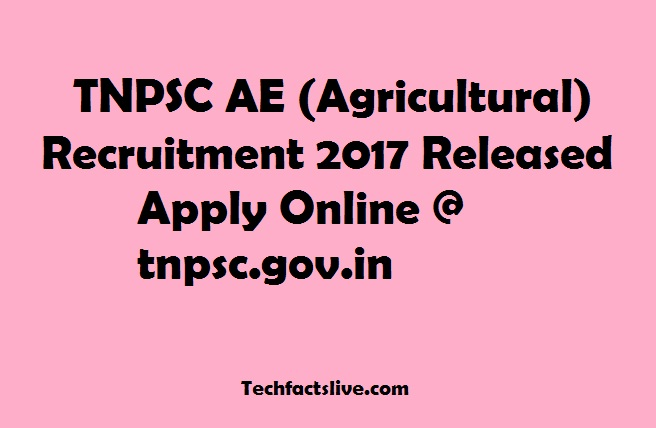 TNPSC AE Recruitment 2017