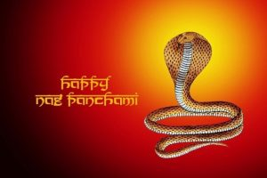 happy naga panchami 3