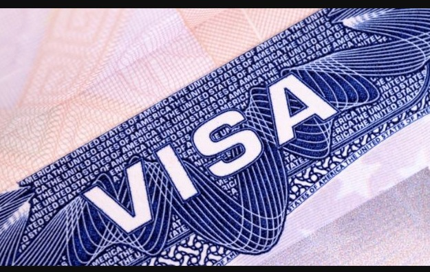 IT professionals visa